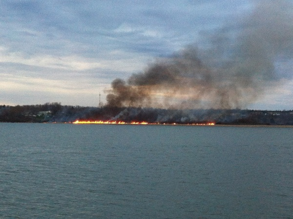 It&#039;s a big one. #ygk #marshfire