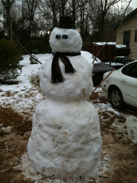 I present to you: FREDDY the Snow Goliath