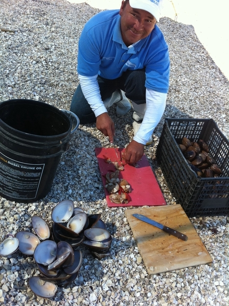 Mon, Magdalena Bay BCS: Nolberto cleaning choc clams 2 eat raw (lime,salsa) &amp; stuff w bacon, veg &amp; cook in coals