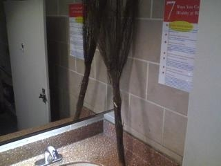 Dear PriceChopper, you make the bathroom feel so much like home with this random straw broom on the sink.