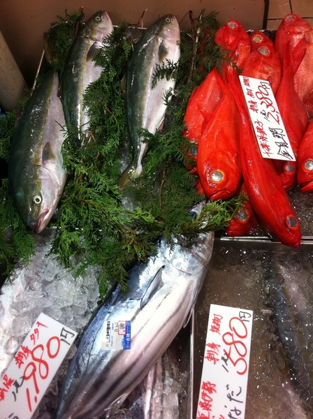 Ameyoko groc store: why can&#039;t my groc store have such pristine bonito, yellowtail and red fish?