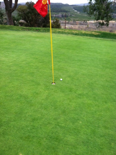 Par 3 so close to first hole in one! #maybenextyear