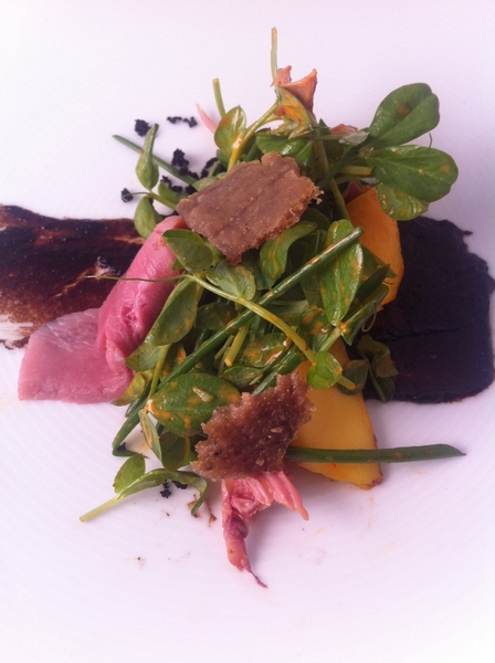 New Topolo tasting menu: 1st Crs: smkd duck &amp; mango salad w guajillo-bl olive dressing. Duck chicharrn.