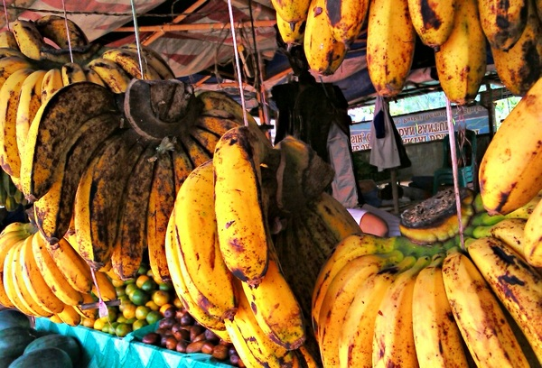 Baranang bananas, my favorite. Less than a dollar per kg