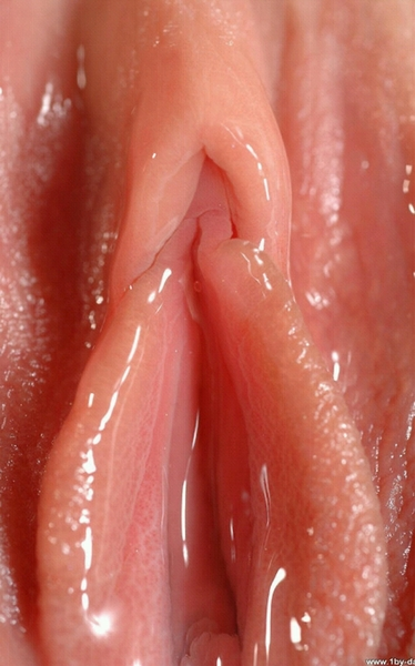 Perfect soft wet pink pussy excellent question