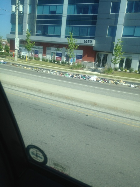 Garbage dump on Elgin Mills
