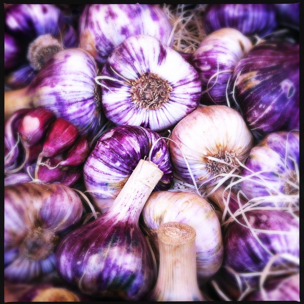 Garlic at the market