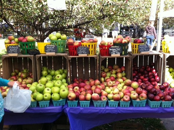 Boy, am I lucky to live where there are dozens of varieties of apples in my little local farmers market!