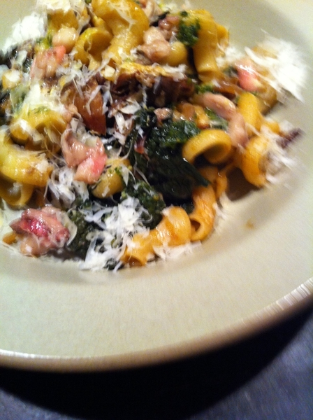 Made dinner: cavatappi pasta w braised lamb, bl kale, presrvd lemon, Romano, marrow.