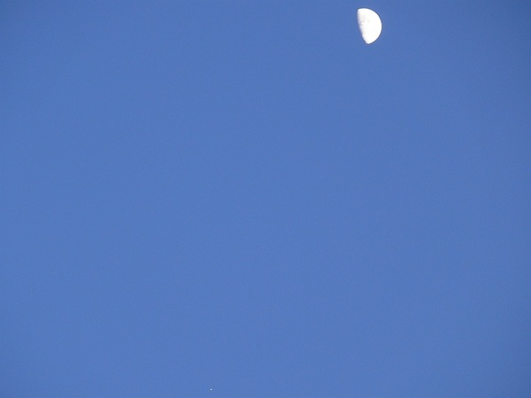 #Moon five & a half degrees from #Jupiter in daylight today 16:06UT