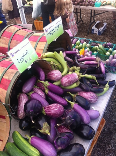 At Green City market: Green Acres had 10 different kinds of eggplant!