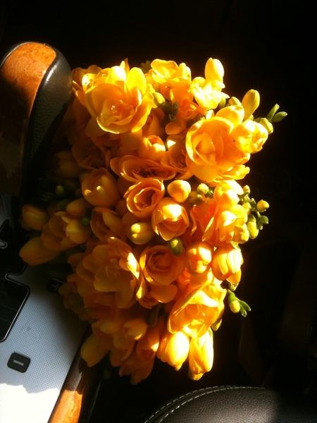 봄날의 향기를 보냅니다 ^^